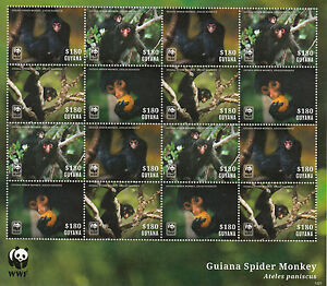 Guyana 2014 MNH Guiana Spider Monkey 16v M/S WWF Wild Animals Wildlife