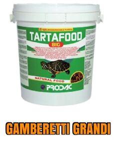 Mangime gamberetti grandi per tartarughe secchiello for Tartarughe grandi