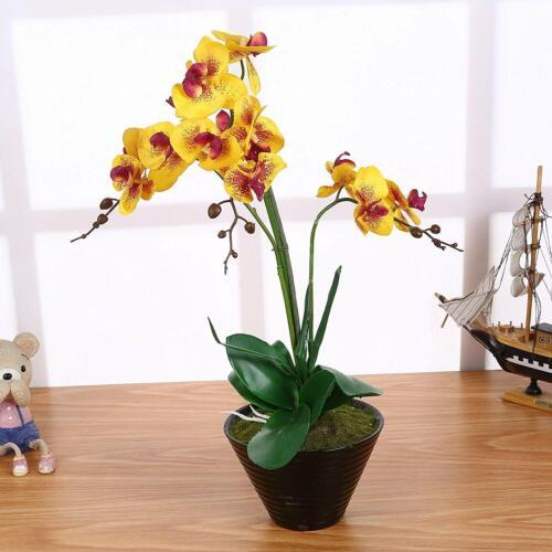 Künstliche Orchidee im Topf 55cm Kunst Blumen Orchideen Phalaenopsis Pflanze XXL