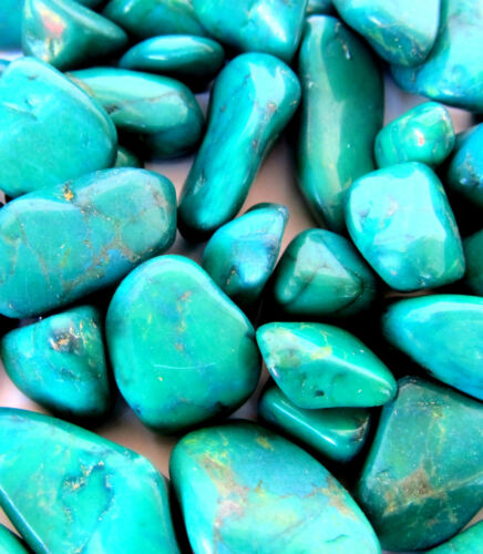Green Howlite 25mm QTY1 Dyed Tumbled Stone Healing Crystal Calm Wisdom Memory