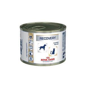 Royal Canin Vdiet Récupération Chien / Chat - 12 X 195 Gr