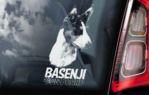 Basenji-On-Board-Auto-Adesivo-per-Finestre-Africano-Bush-Congo-Cane-Firmare