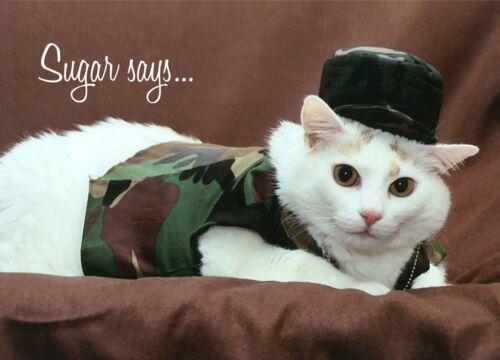 SUGAR Says FAT CAT MODEL INSPIRATIONAL BIRTHDAY Greeting Card Soldier