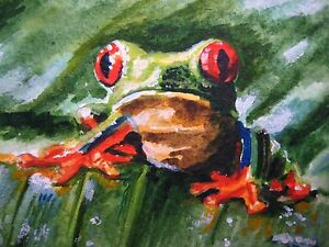 Watercolor-Painting-Red-Eyes-Green-Frog-Nature-ACEO-Art