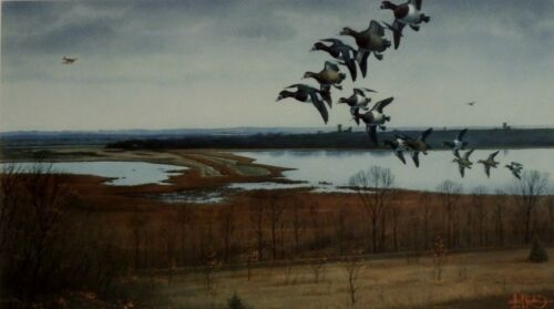 Les Kouba RIngnecks Visit Upgrala S//N Duck Hunting Print