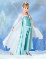 Disney Store Frozen Elsa Limited Edition LE Costume RARE!!  SOLD OUT!! NEW Dress