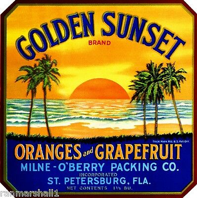 Cocoa Florida Florigold Orange Citrus Fruit Crate Label Art Print