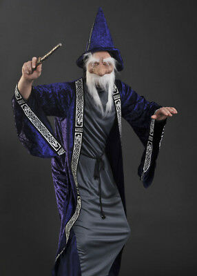 Adult Dumbledore Style Wizard Costume