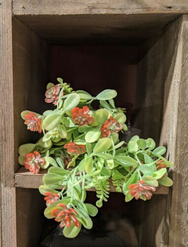 NEW SPRING Artificial Coral Bud Succulent Bush Plastic Flower Stem Outdoor Plant