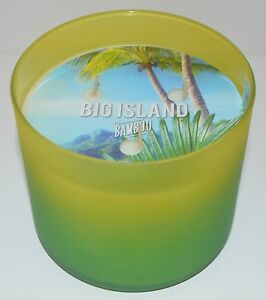 BATH-BODY-WORKS-BIG-ISLAND-BAMBOO-SCENTED-CANDLE-3-WICK-14-5OZ-LARGE-GREEN-OMBRE