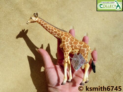 nouveau CollectA Girafe /& VEAU solide Jouet en plastique Wild Zoo animale africaine