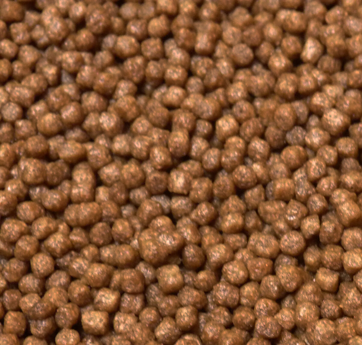 Koi Growth Food 15kg 3mm or 6mm Floating Pellet, Pond Growth, Fish Food Grower