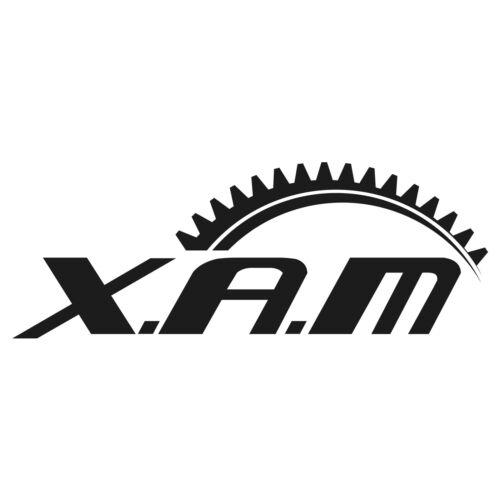 SC35 SILENT Kettenkit XAM EXTRA verstärkt GOLD Nietschloss Honda CBR 1100 XX