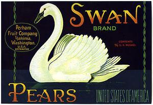 ORCHARD~RARE ORIGINAL 1920s AUTHENTIC YAKIMA-WASHINGTON PEAR FRUIT CRATE LABEL