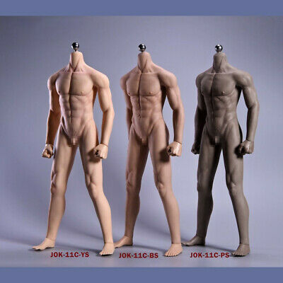 Steel Skeleton 1//6 Scale Models 12 inch Male Figure Body /& Accessories
