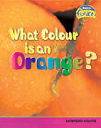What Colour is an Orange?: Light and Colours by Tristan Boyer Binns (Hardback, 2006)