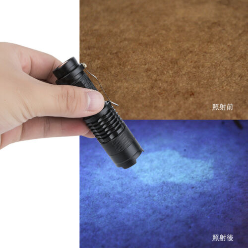 UV Flashlight Purple Violet Light LED CREE Flashlight Zoomable Blacklight Torch