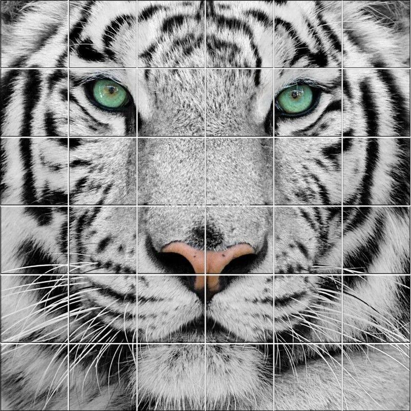 Adhesivo Alicatado de Pared Decoración Tigre 826