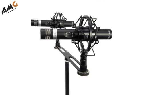 se electronics se5 small diaphragm condenser microphone factory stereo pair for sale online