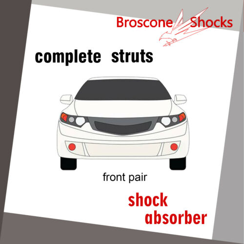 For Toyota Solara 2006 2007 2008 Rear Pair Complete Shocks /& Struts