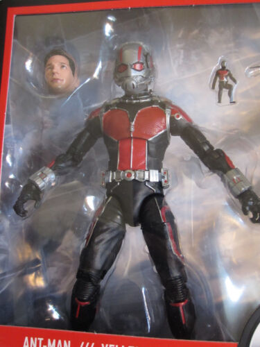 "Marvel Legends 6/"" MCU Studios the First Ten Years Ant-Man w//Paul Rudd Head New"