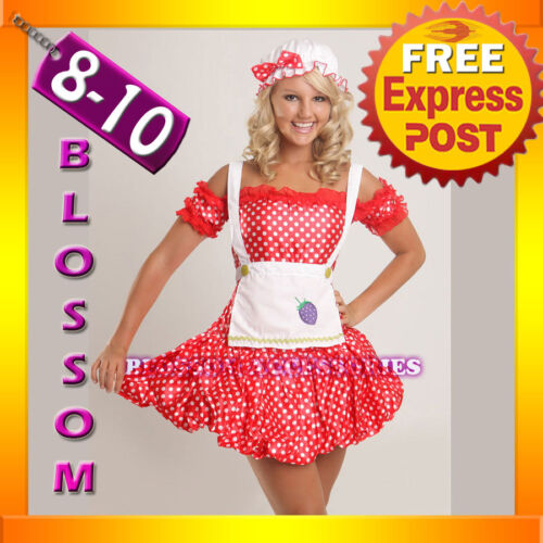 BL4 Strawberry Shortcake Fancy Dress Costume S//M 8//10