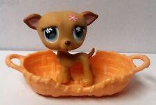 Littlest Pet Shop Brown Dog Puppy Greyhound Blue Eyes Pink Flower LPS #498