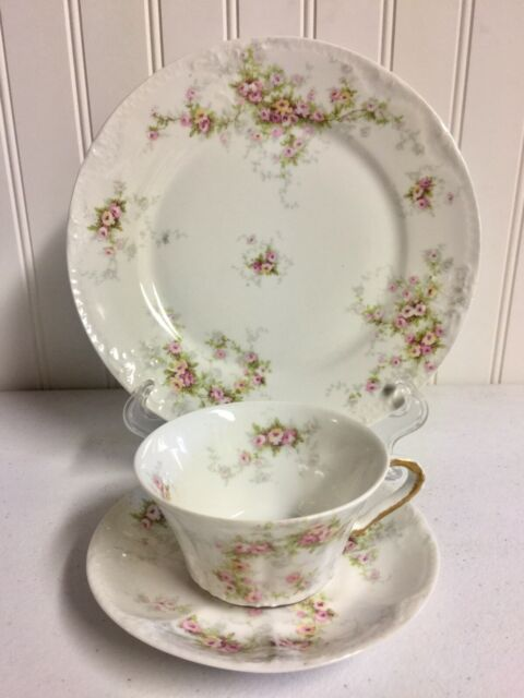 "ANTIQUE THEODORE HAVILAND LIMOGES FRANCE WILD ROSES TEA CUP/SAUCER & 8.5"" PLATE"