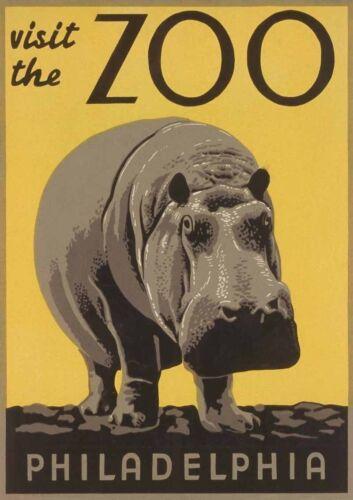 Vintage Art Print Poster Visit The Zoo Philadelphia Hippo A1 A2 A3 A4 A5