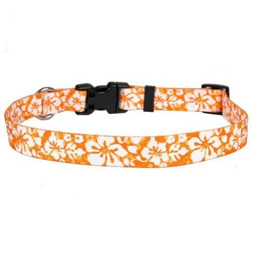 NEW Orange Dog or Cat Collar in Hawaiian Island Floral by Yellow Dog Design