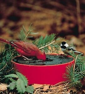 Plow & Hearth Solar Sipper, Insulated Bird Water Bowl, with Bracket, Red
