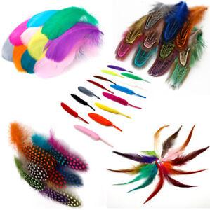 New-DIY-Mix-Color-Goose-Chicken-Pheasant-Feather-Wedding-Decor
