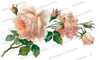 Vintage Image Victorian Peach Stem Rose And Rosebuds Waterslide Decals Fl457