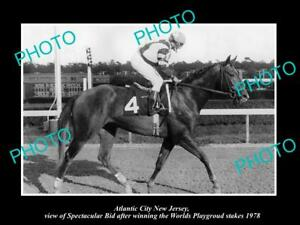 OLD-LARGE-HORSE-RACING-PHOTO-OF-ATLANTIC-CITY-NEW-JERSEY-SPECTACULAR-BID-1978