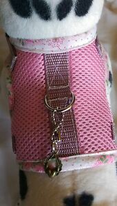 Hundegeschirr-S-Softgeschirr-Brustgeschirr-Leine-Halsband-Welpen