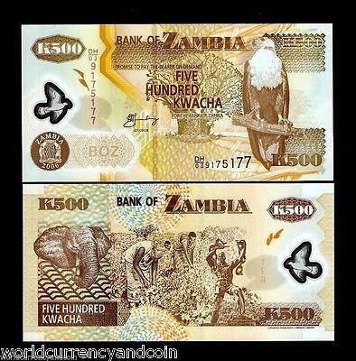 ZAMBIA 500 KWACHA P43 2011 x 100 Pcs Full Bundle Lot POLYMER ELEPHANT UNC NOTE