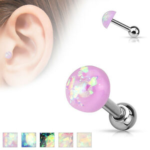 round piercing bezel studs sterile earrings pack new sealed colour stud ear dp gold certified brand