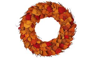 """ED On Air 17/"""" Dried Leaf Wreath w Twigs by Ellen DeGeneres Fall H206109 ORANGE"""