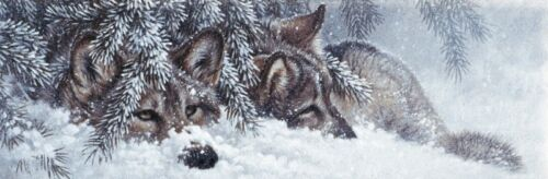 Quiet Time by Larry Fanning Art Print Wolves Snow Wolf Wildlife Poster 22x11