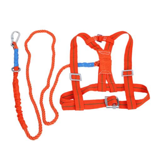 Länge Absturzsicherung Gurt Sicherheit Gurt 3 Meter, Fallschutz Auffanggurt