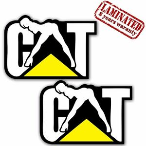 Funny Cat Car Stickers