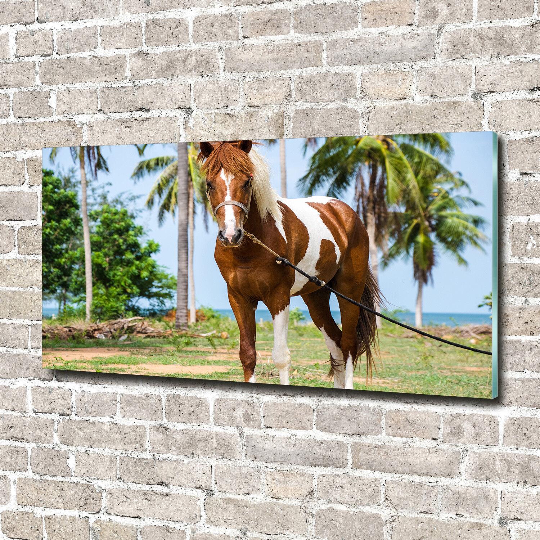 Glas-Bild Wandbilder Druck auf Glas 140x70 Deko Tiere Pinto Pferd