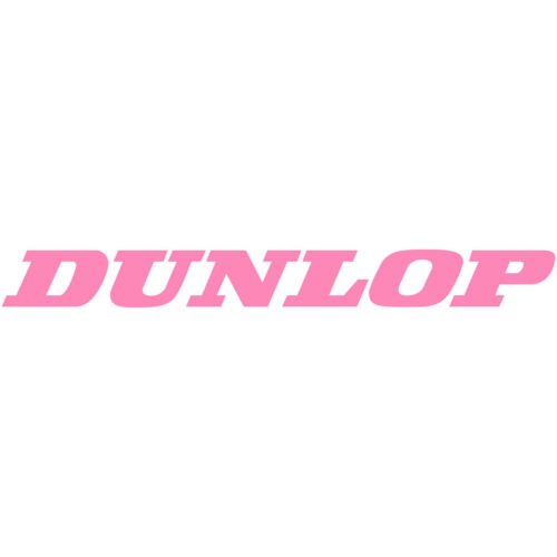 "2x Dunlop Tires Logo 4/"" Decal Sticker car truck window laptop wheel suv offroad"