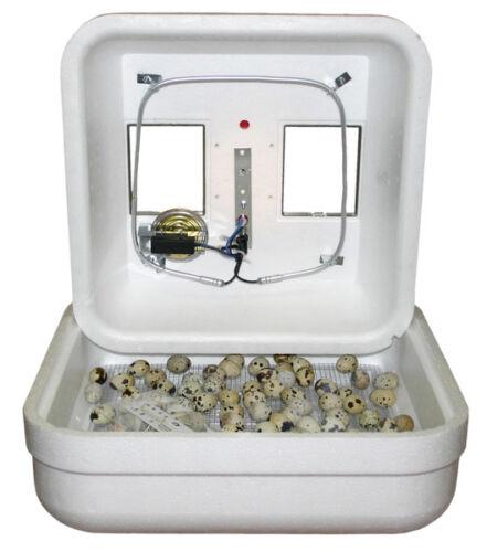 Incubator GQF HovaBator Still//Thermal Air Egg Incubator 1602N Chicken Quail Bird