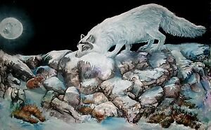 ARCTIC-ENCOUNTER-Original-15x22-ARTIC-FOX-Art-Painting-on-canvas-Sherry-Shipley