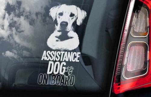 Labrador Retriever Dog Decal V01 Assistance Dog on Board Car Window Sticker