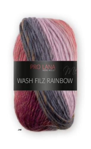 100 g LAINE BOUILLIE Pro Lana Wash Feutre Rainbow machines à laver fouiller dégradé