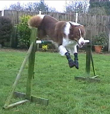 Dog Boots for dogs with CDRM, dragging or knuckling paws
