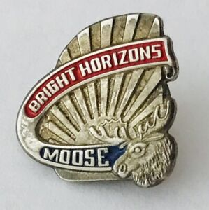Bright-Horizons-Moose-American-Child-Care-Pin-Badge-Rare-Vintage-A2