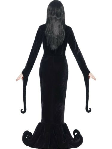 Adult Duchess of the Manor Costume Womens Ladies Halloween Fancy Dress Outfit